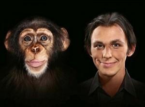 про обезьян на английском,